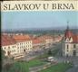 Slavkov u Brna - město a okolí