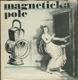 Magnetická pole