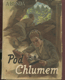 Pod Chlumem - příběhy dvou chlapců za světové války