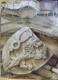 Dějiny českého výtvarného umění I: Od počátků do konce středověku 1+2